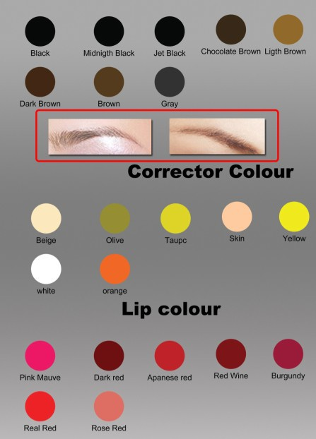 Pure plant eternal tattoo ink permanent makeup tattoo for Tattoo ink color chart